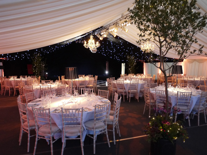 Live trees inside a party marquee